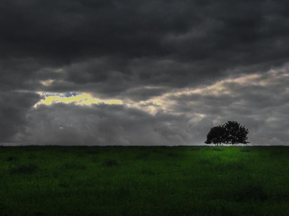 Wolken Baum