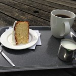Zitronen-Mandel softcake